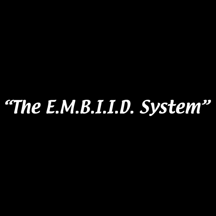 TheEmbiidSystemTitleCard